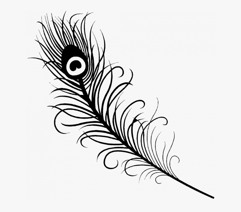 Medium Size Of Coloring Page Easy Peacock Feather Drawing
