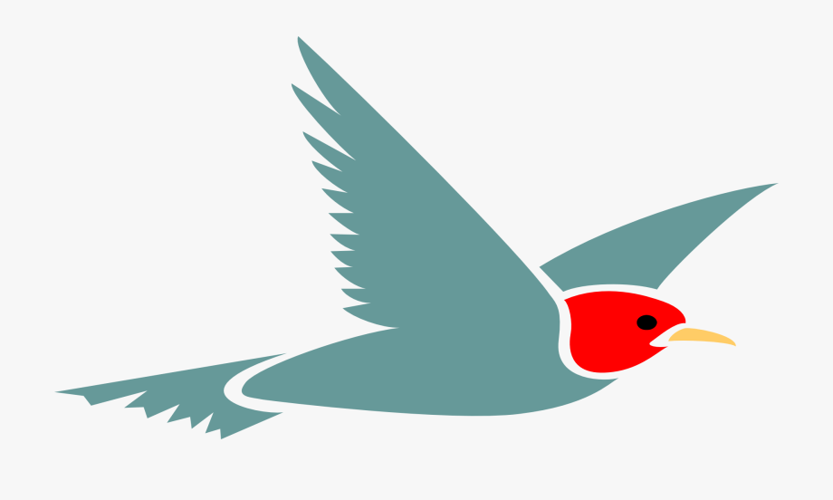 Free Airplane Clipart Images Cartoon Bird Flying Transparent