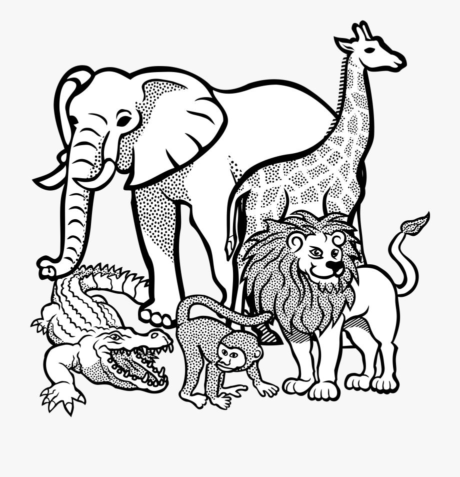 Affe Africa Afrika Animal Animals Crocodile Elephant Animals Line Drawing Clipart Transparent Cartoon Free Cliparts Silhouettes Netclipart
