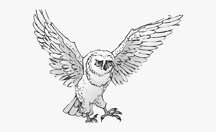 Barn Owl Flying Clip Art Black and White