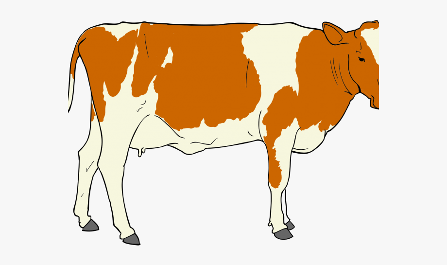 23+ Beef Cartoon Clipart