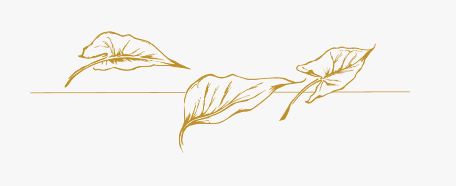Free Png Gold Leaves Transparent Cartoon Free Cliparts Silhouettes Netclipart
