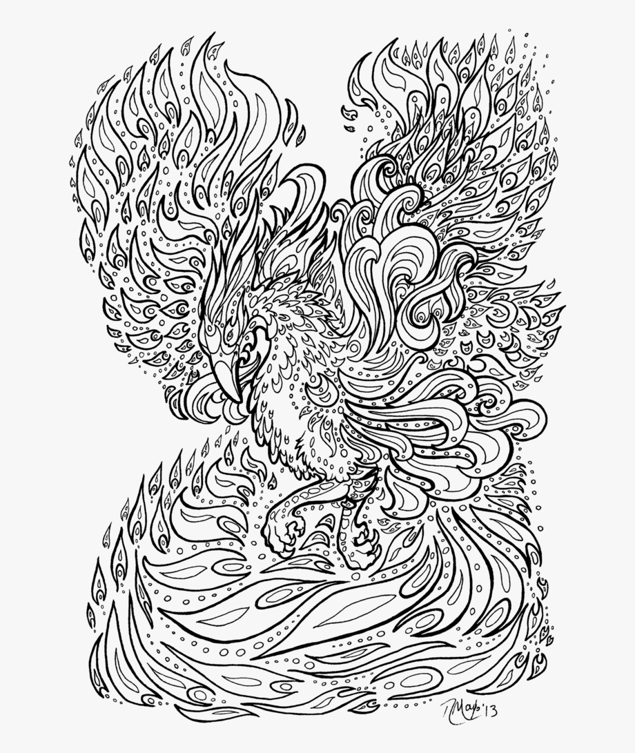 Transparent Anime Lineart Png - Phoenix Colouring Pages ...